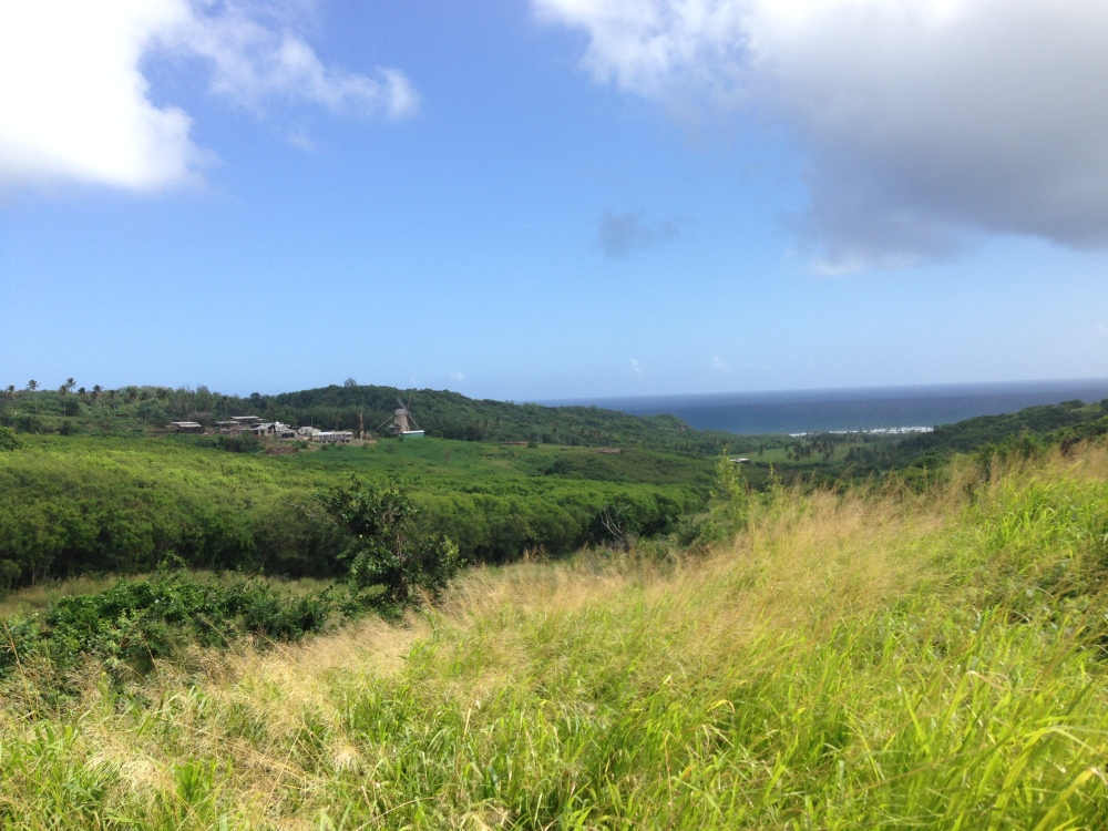View while horseback riding in the north east part of the island